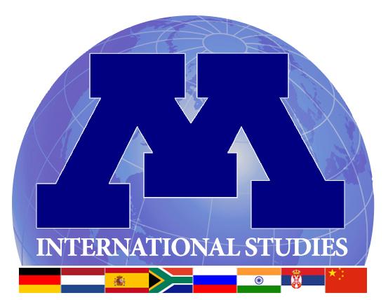 الدراسات الدولية